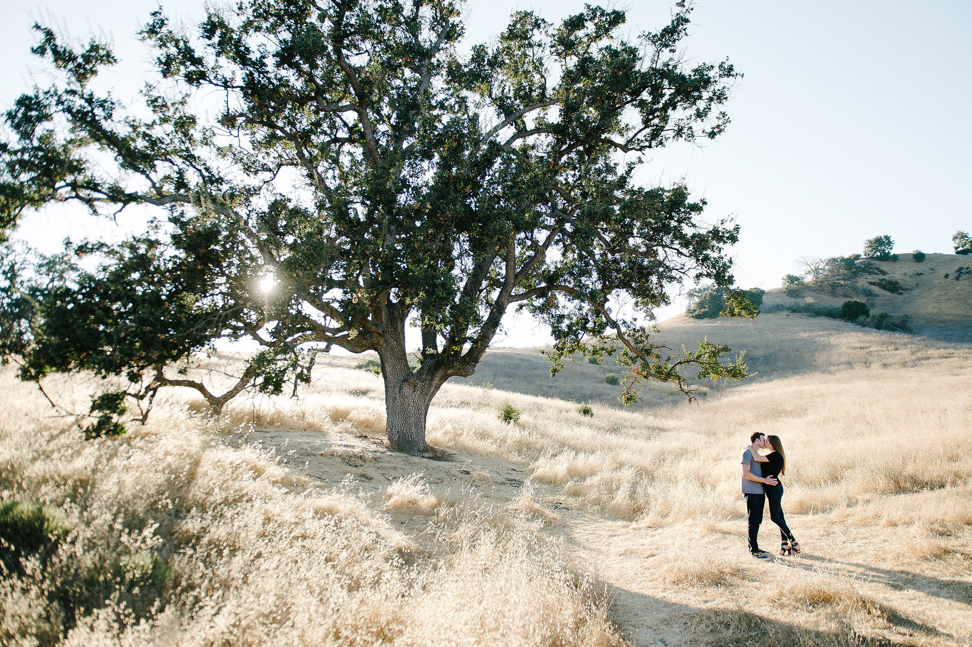 couple embracing under oak tree malibu creek state park engagement photos