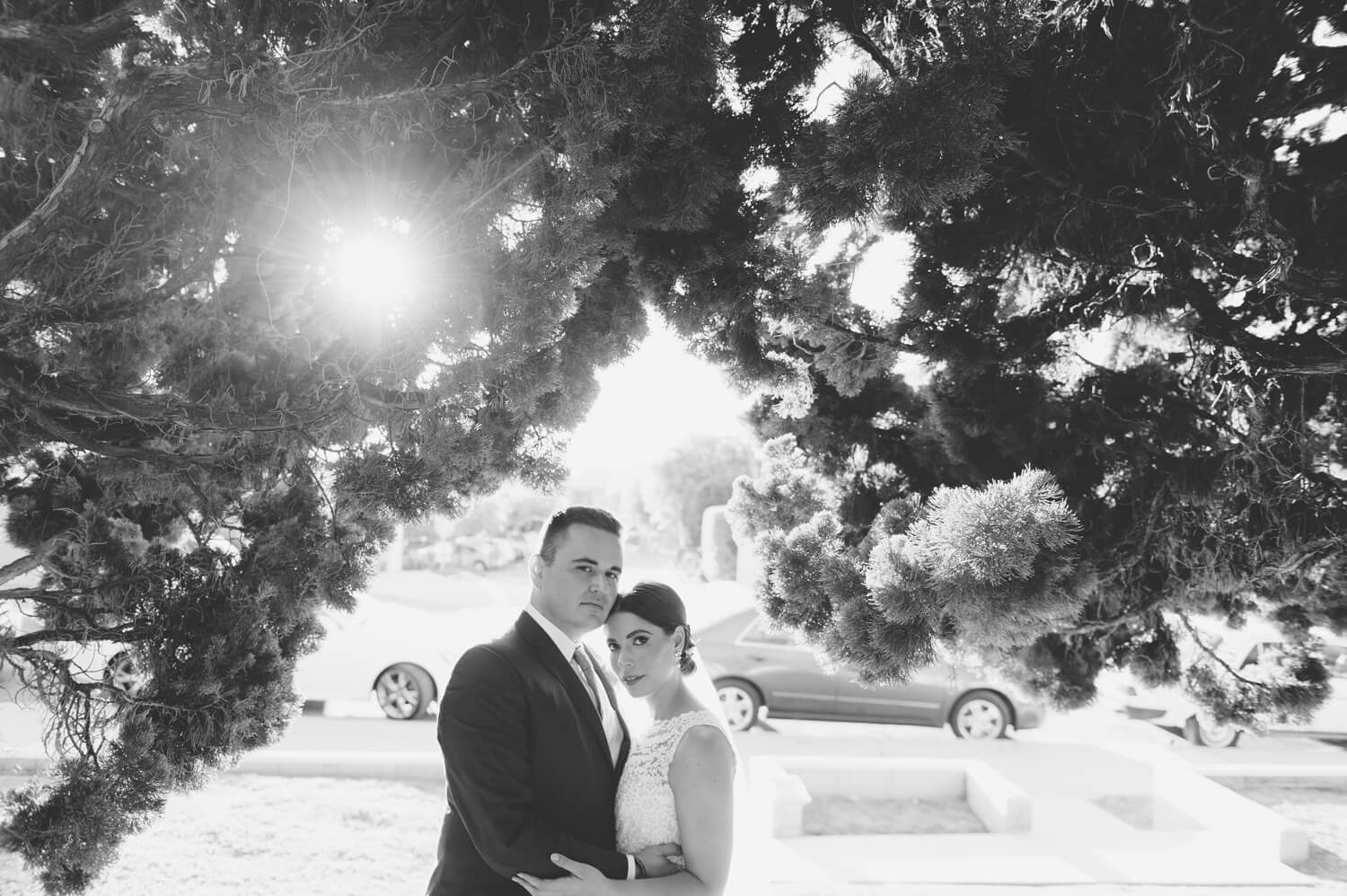 bride and groom pose under tree with sun after all hallows wedding ceremony