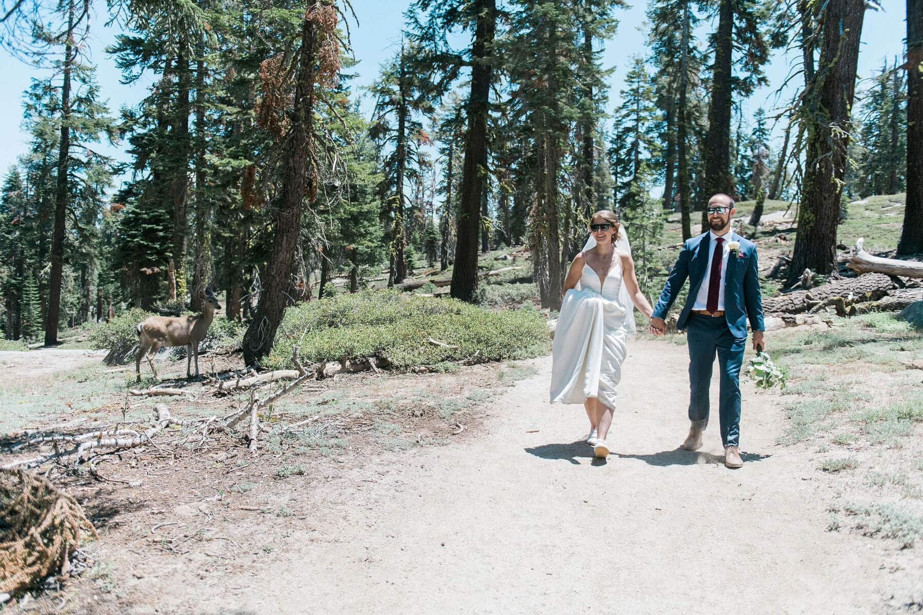 bride and groom walking on trail next to deer on way to taft point photo shoot